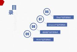 亚马逊 amazon ebay wish aliexpress 跨境产品开发流程